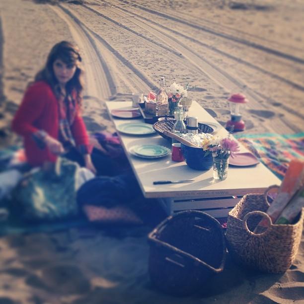 1-14 bonfire picnic
