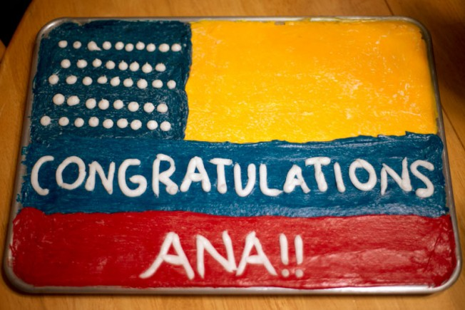 ana_cake1