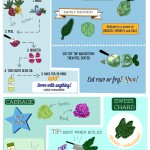 Educate Your Plate: Veggies