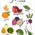January Produce: What's in Seaon