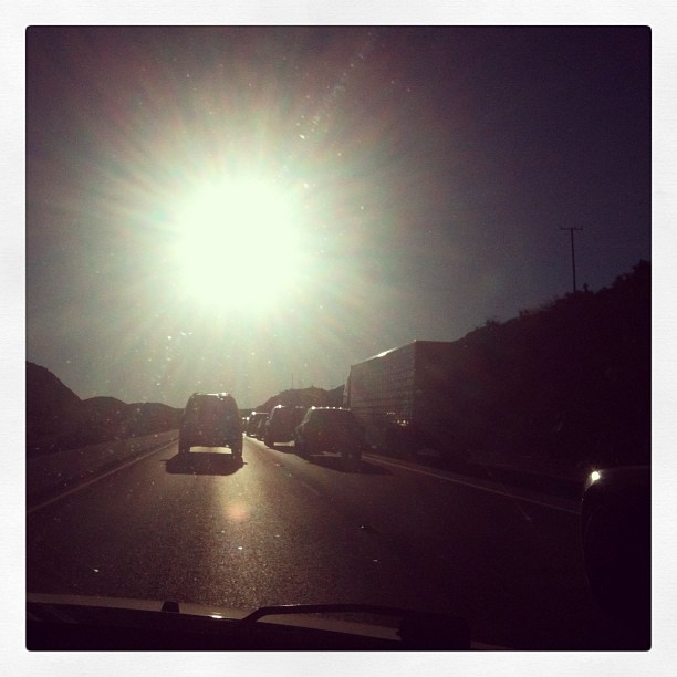 Garlic My Soul | Leaving Las Vegas