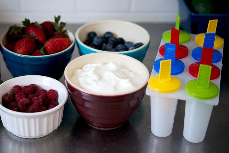 Blueberry Yogurt Popsicles | Garlic, My Soul
