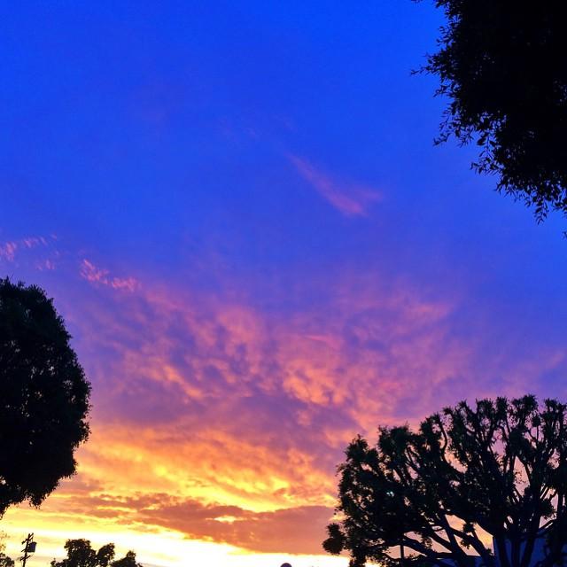 LA Sunset   Garlic, My Soul