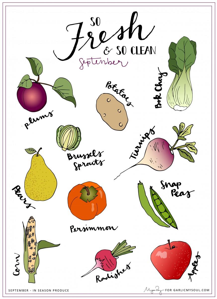 Seasonal Produce | Garlic, My Soul | Megan Roy Designs